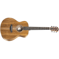 Taylor Guitar GS Mini-e Koa Fall Limited Edition - ES-B Expression System Pickup - Included Taylor Hard Bag