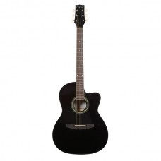 Carlos Acoustic Guitar C901 - Black - Include Free Soft Case