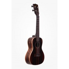 Kala Striped Ebony Series Concert Ukulele - Included Bag
